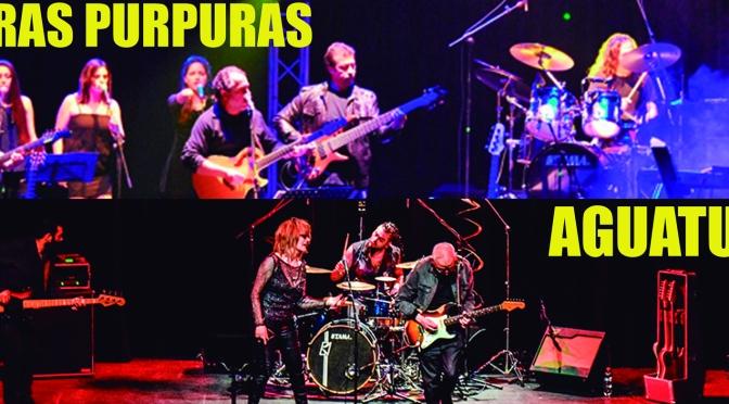Sombras Púrpuras y Aguaturbia en Valparaíso juntos por primera vez – SAB/2/nov., Teatro Municipal